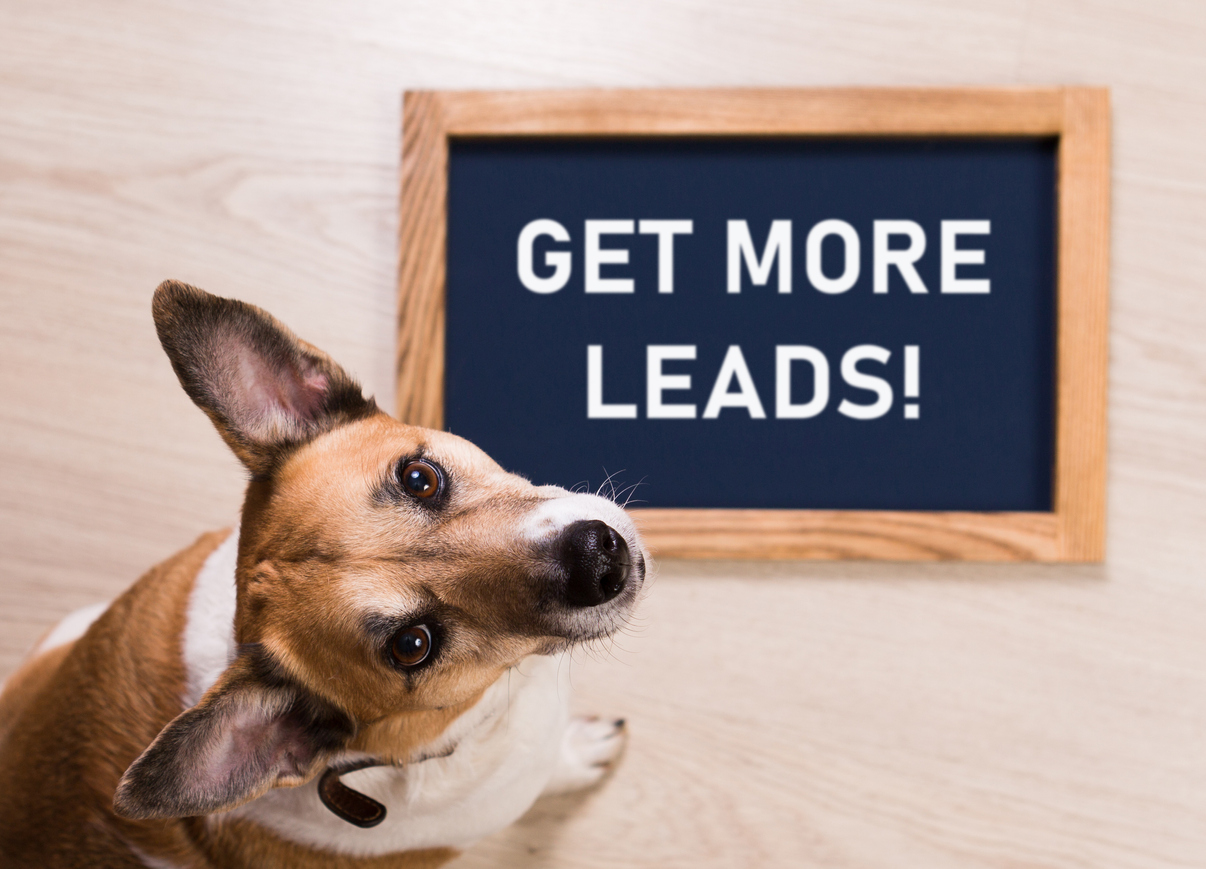 Get More Leads and Drive Sales with PPC